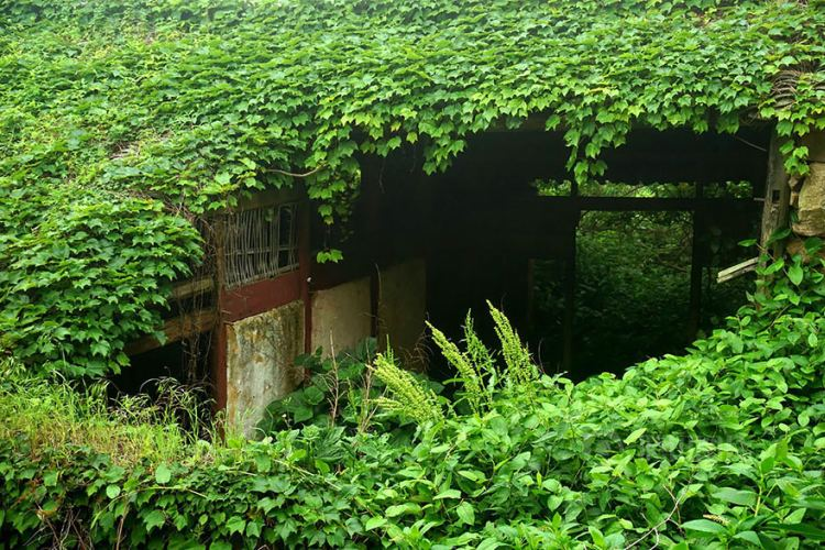 abandoned village zhoushan china 109